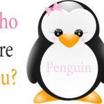 thuat-toan-penguin-la-gi